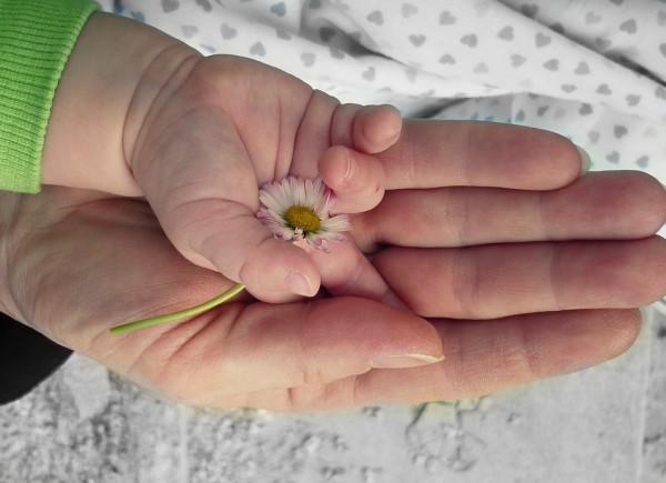 hands-105455_960_720-1
